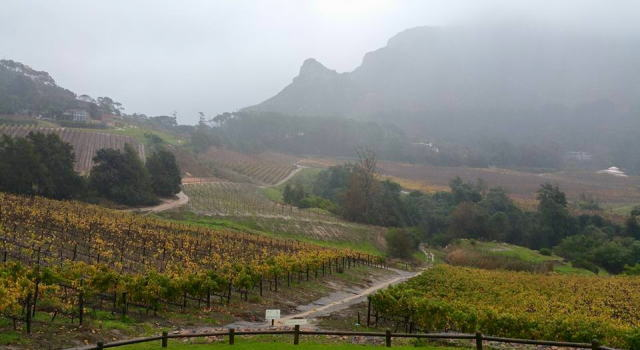 Constantia Glen Wine Estate